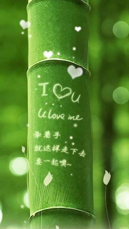 Bamboo love Wallpaper