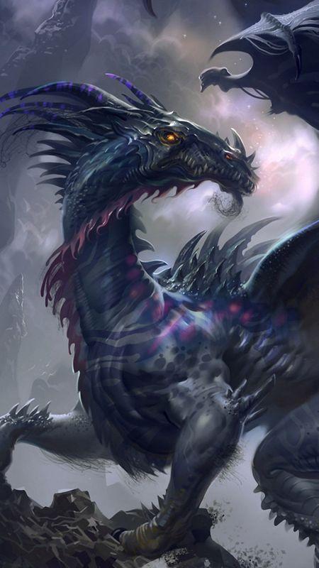 Black Dragon Wallpapers Download Mobcup