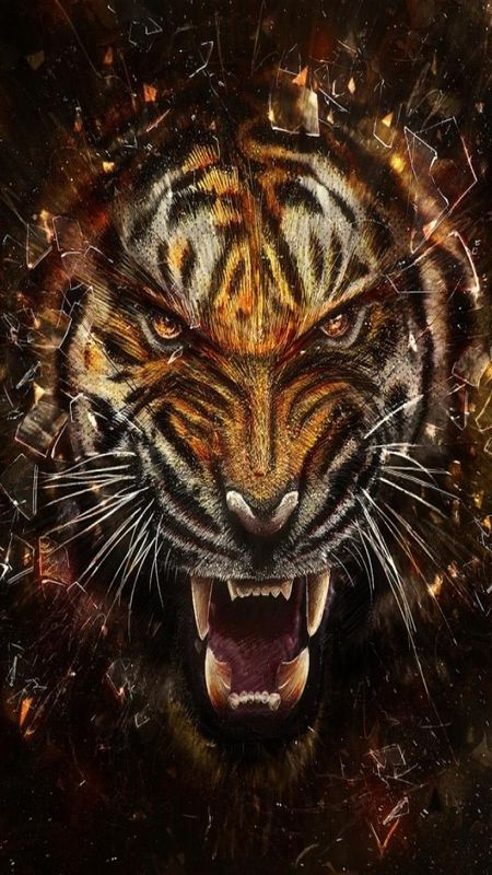 Angry Wild Cat Wallpaper