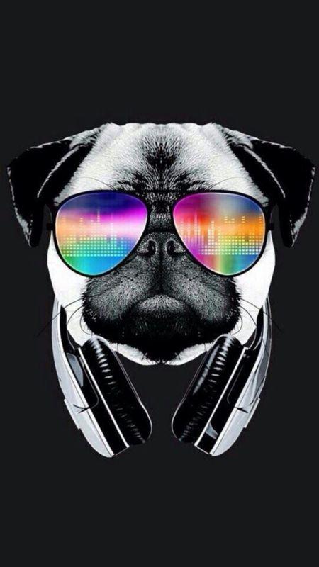 Cool Bulldog Wallpaper